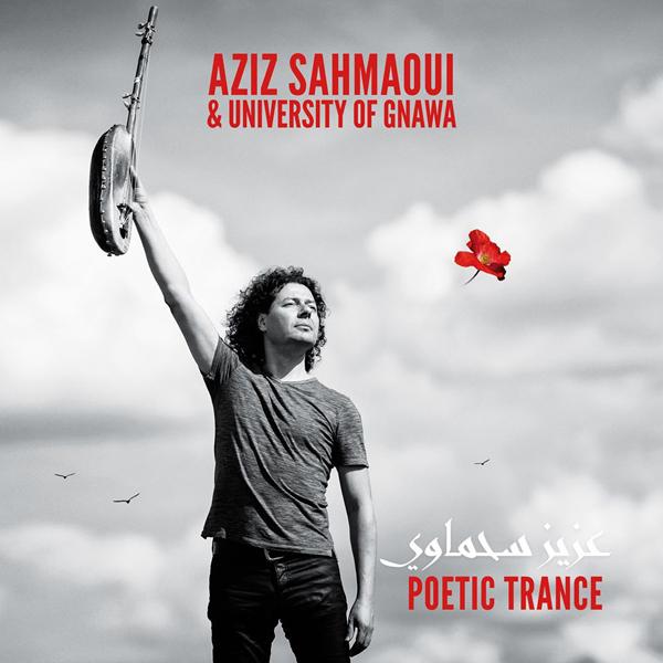 Aziz Sahmaoui (8)