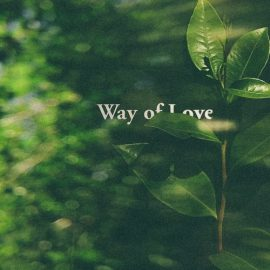 BETA RADIO - Way Of Love